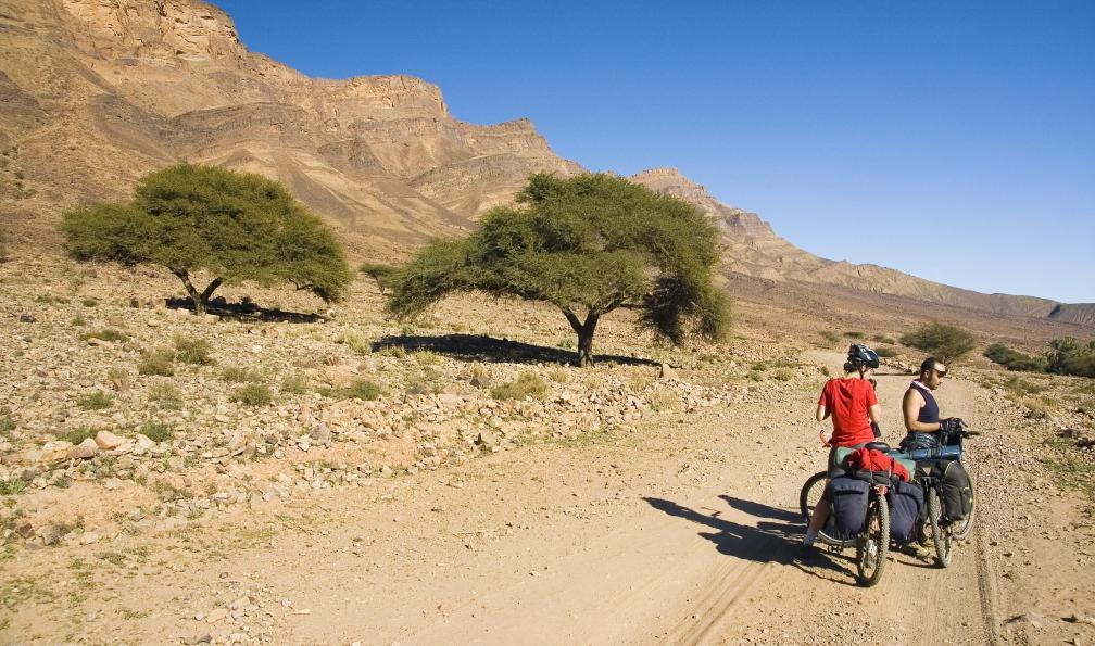 Image Atlas, palmeraies et dunes à vélo