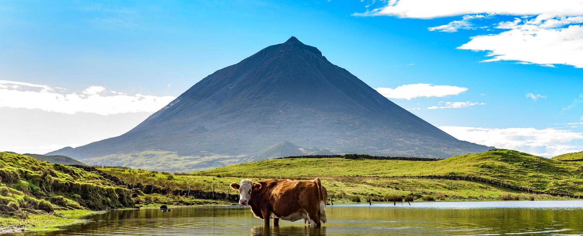 Voyage à pied : Açores : Les volcans de l'atlantique