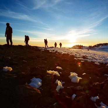 Kilimandjaro: voie Machame et Big Five