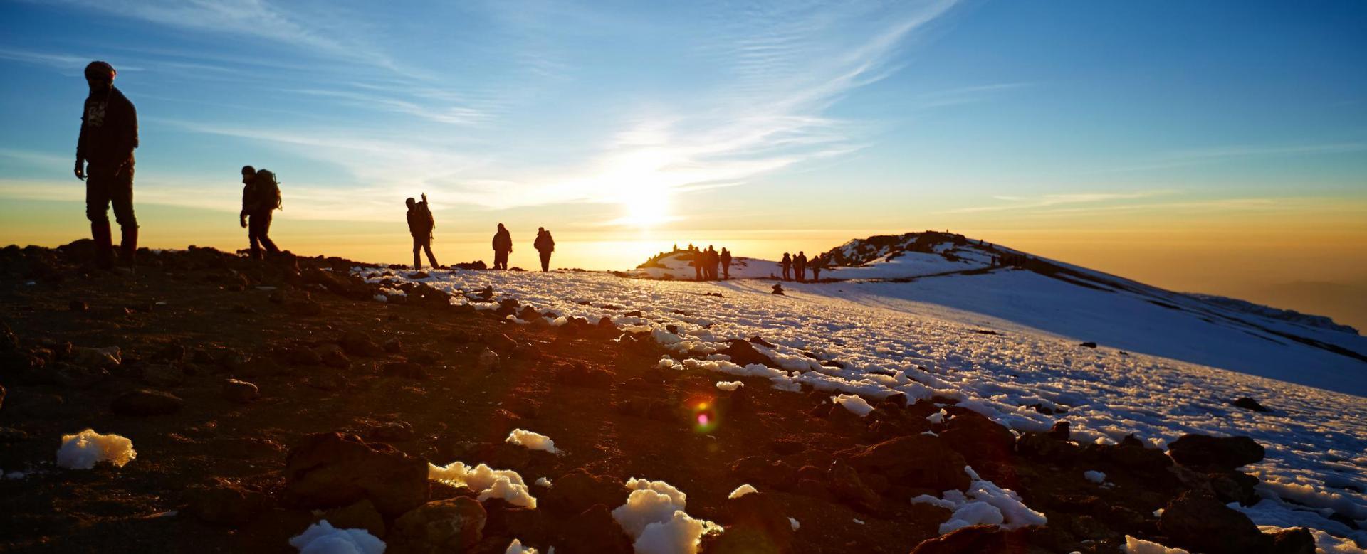 Voyage avec des animaux Tanzanie : Kilimandjaro : voie machame et big five