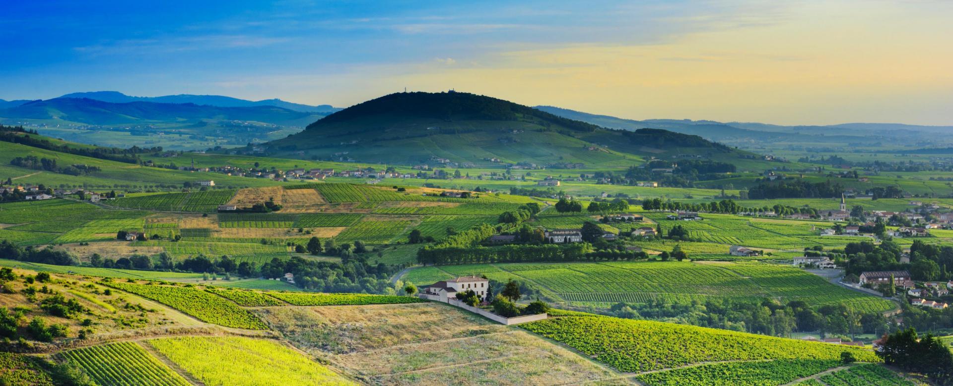 Voyage en véhicule France : Les vignobles de bourgogne à vélo