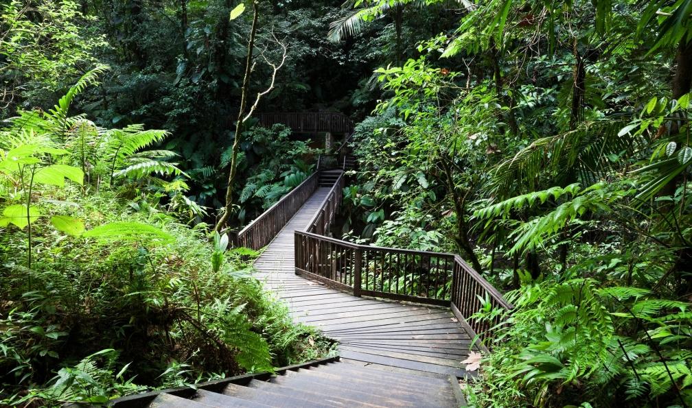 Image Guadeloupe, paradis tropical