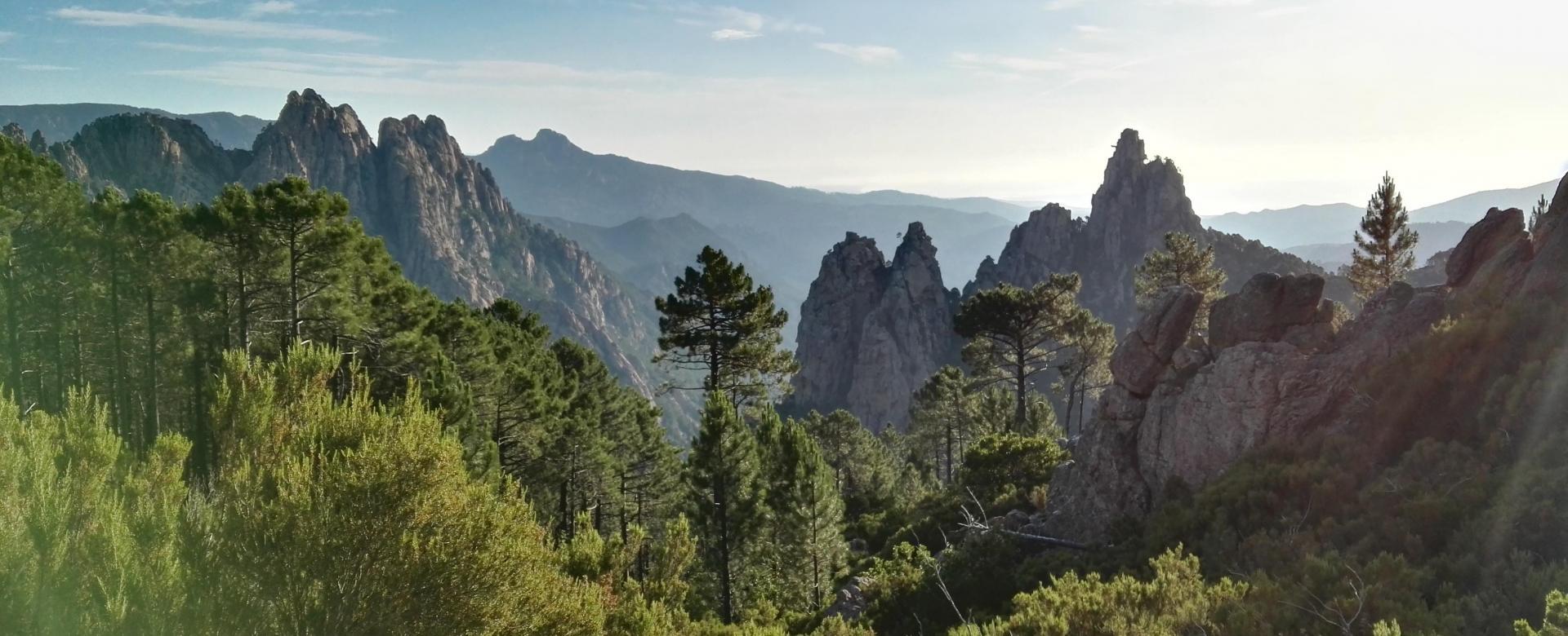 Voyage à pied France : De bavella au golfe de valinco