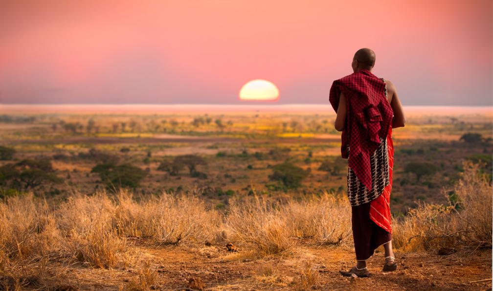 Image Au pays de simba