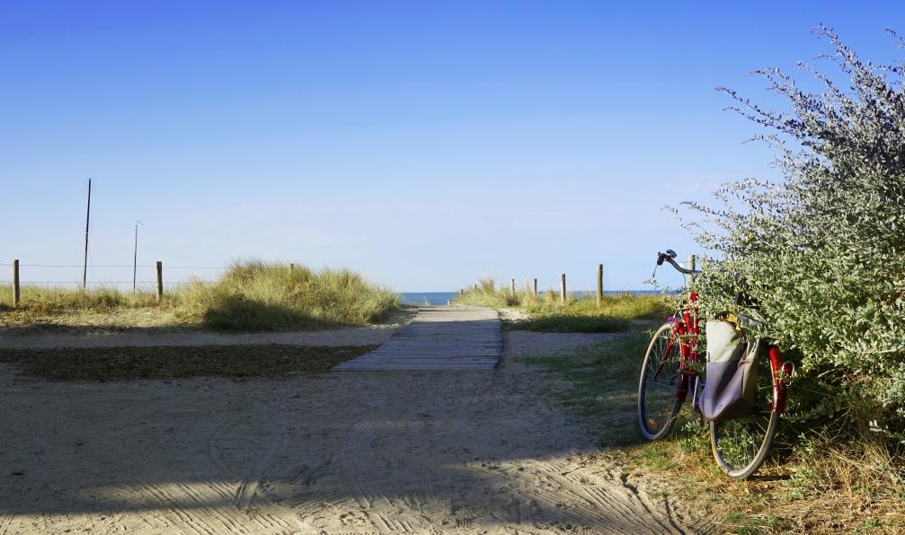 Image La vélodyssée : de nantes à la rochelle