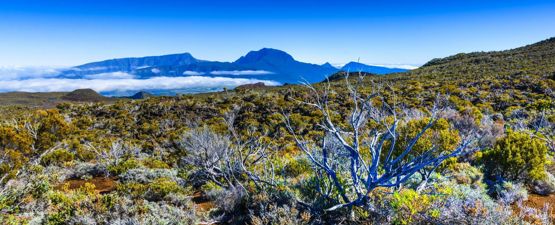 Voyage à pied : Trail à la réunion : la grande diagonale