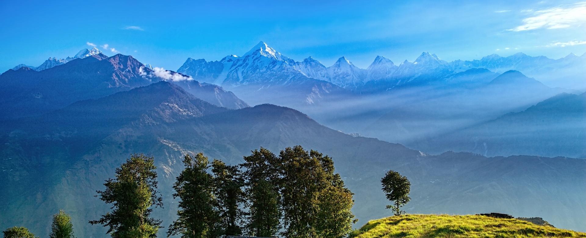 Voyage avec des animaux : Inde : Contreforts de l\'himalaya