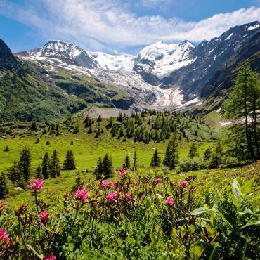 Panoramas du pays du Mont-Blanc
