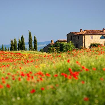 De Florence à la Toscane du Sud