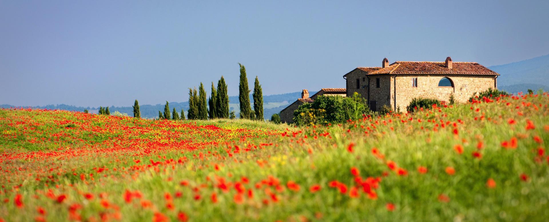 Voyage à pied : De florence à la toscane du sud