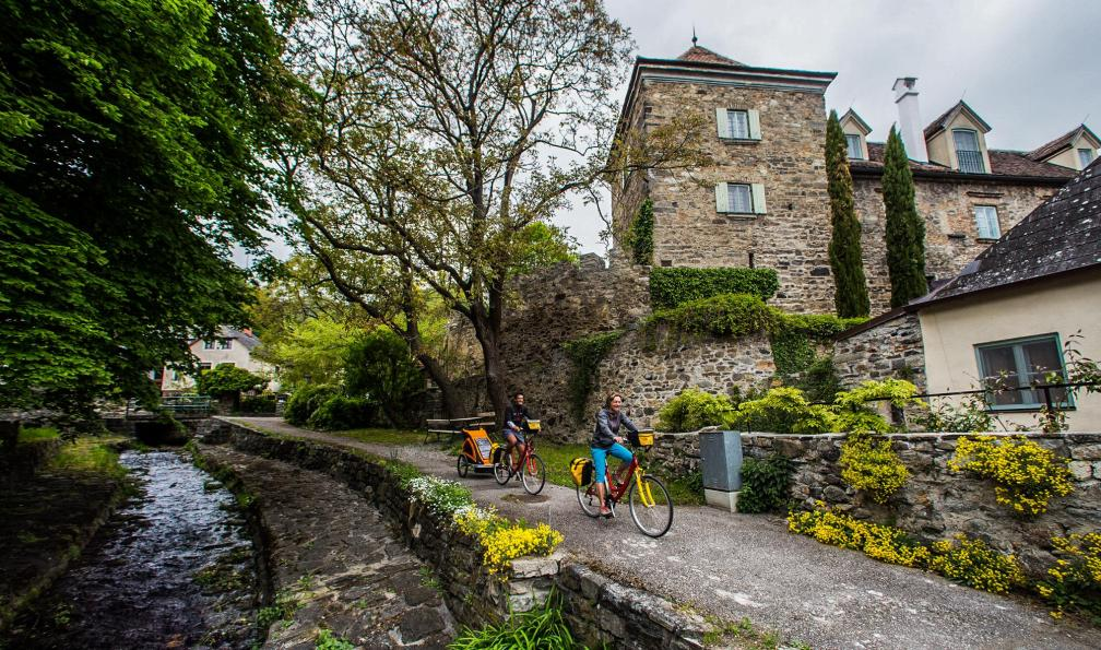 Image Le long du danube à vélo en famille