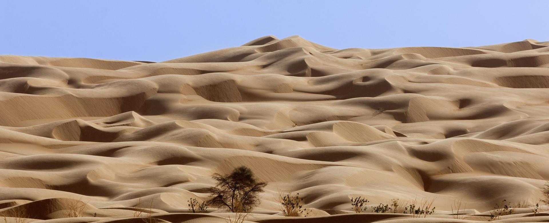 Voyage en véhicule : Panorama sur l'adrar : de ouadane à terjit