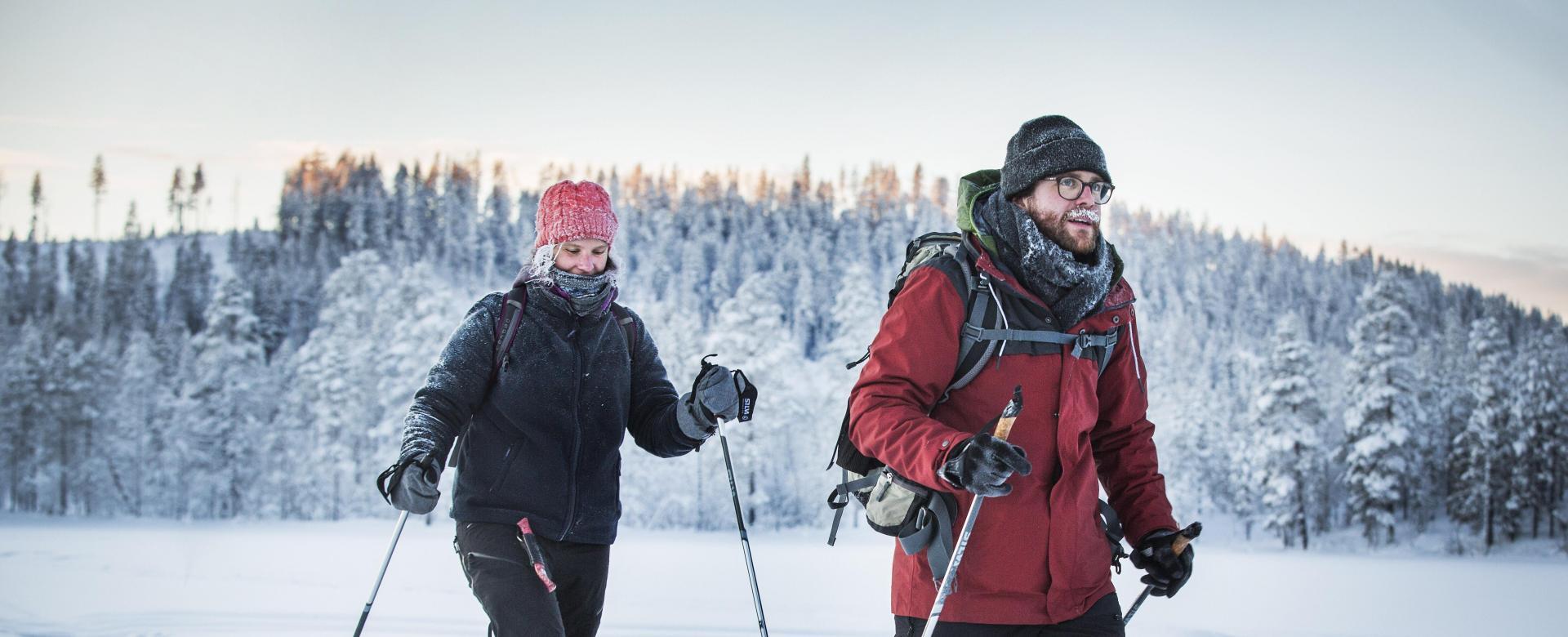 Voyage à pied : Suède : Déconnexion en laponie