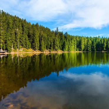 Traversée de la Forêt-Noire
