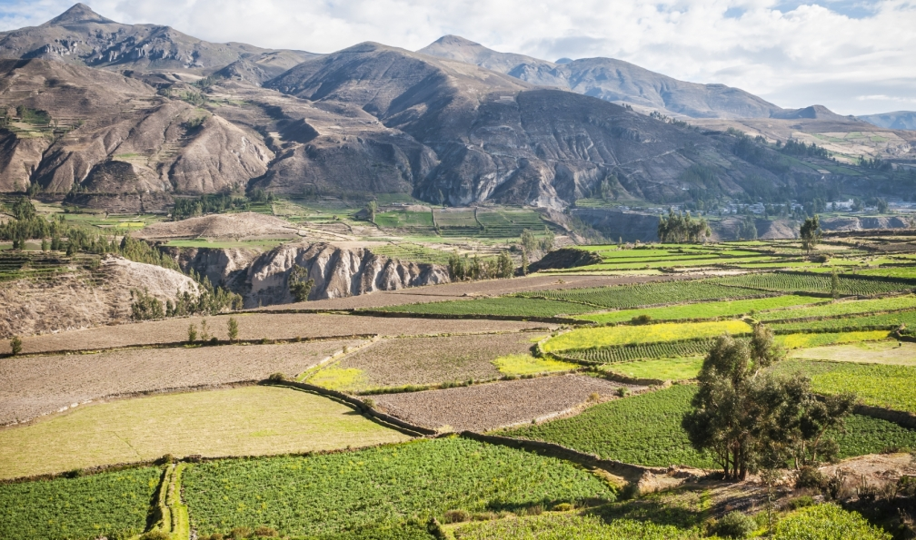Image Le trek des canyons de cotahuasi et colca