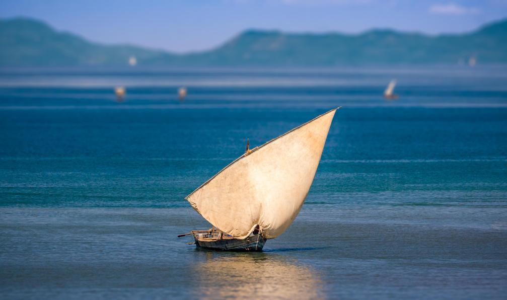 Image Terres du nord : le trésor malgache