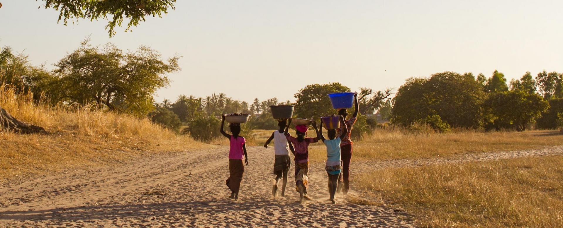 Voyage à pied : De saint-louis au delta du saloum