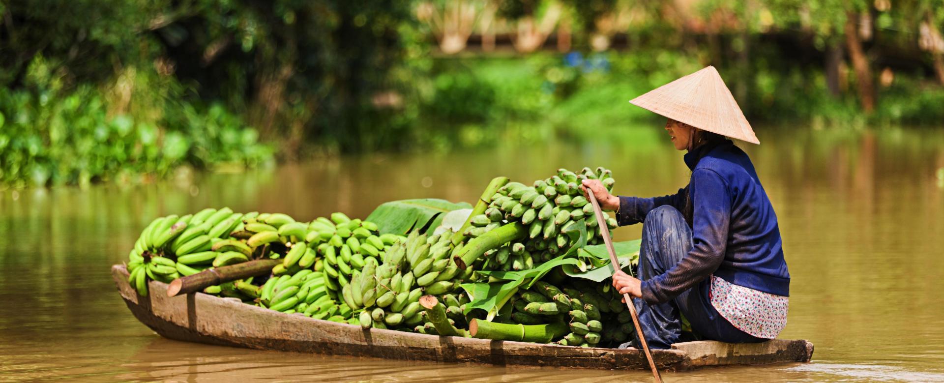 Voyage à pied : Nord-viêtnam et temples d\'angkor