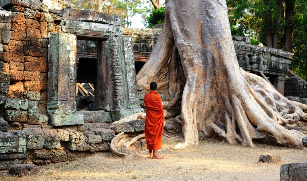 Image Angkor à vélo en toute liberté