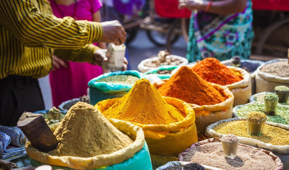 Image Kerala, trek entre épices et canaux