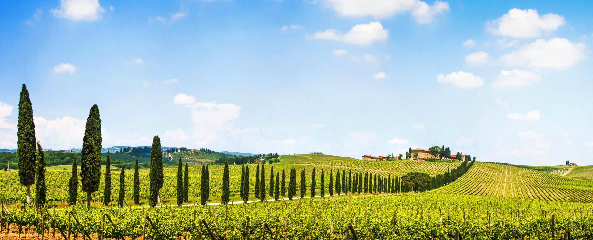 Voyage à pied : Toscane, les chemins de la renaissance