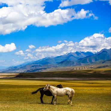 Kirghizie, aventure nomade