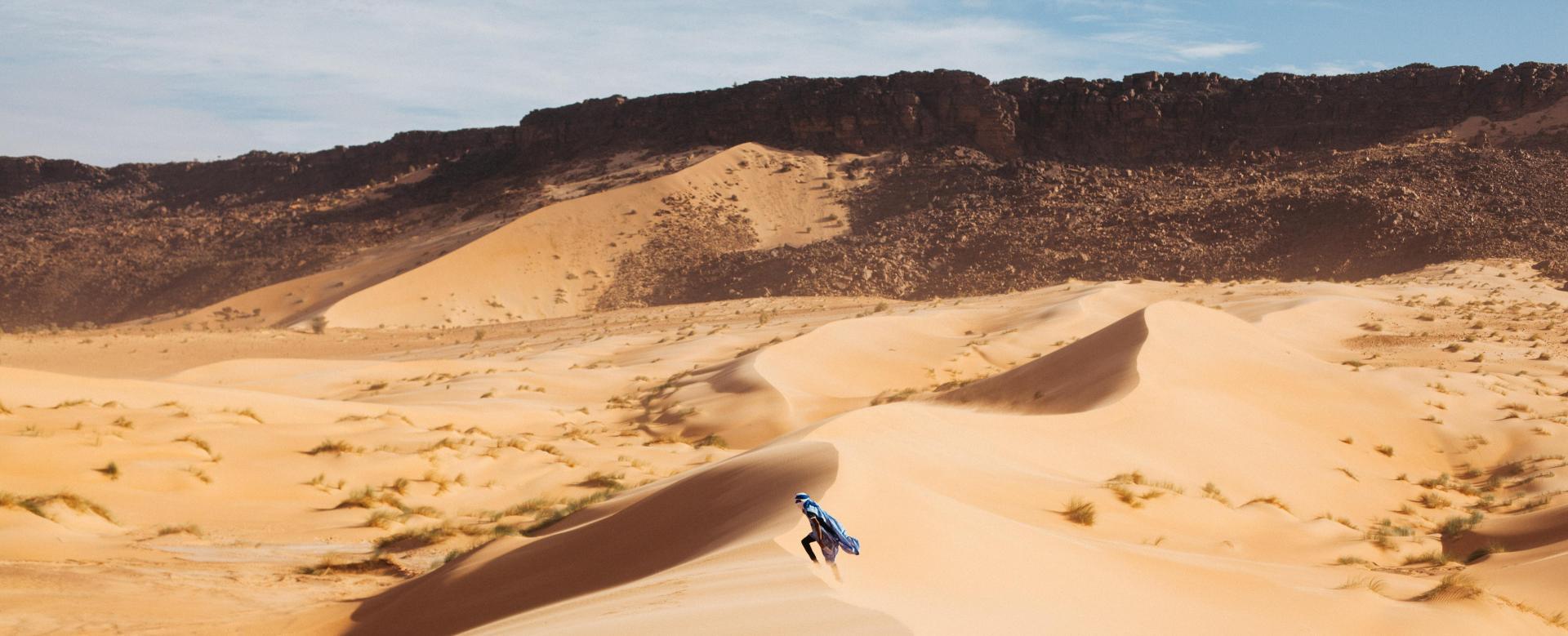 Voyage à pied : Mauritanie : Kaléidoscope saharien