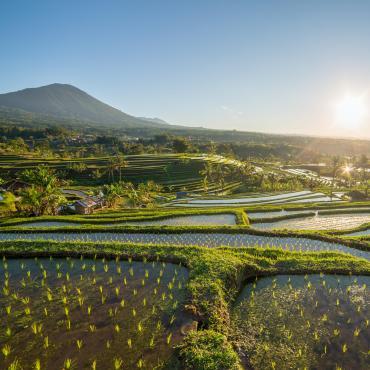 Bali, trésor hindou