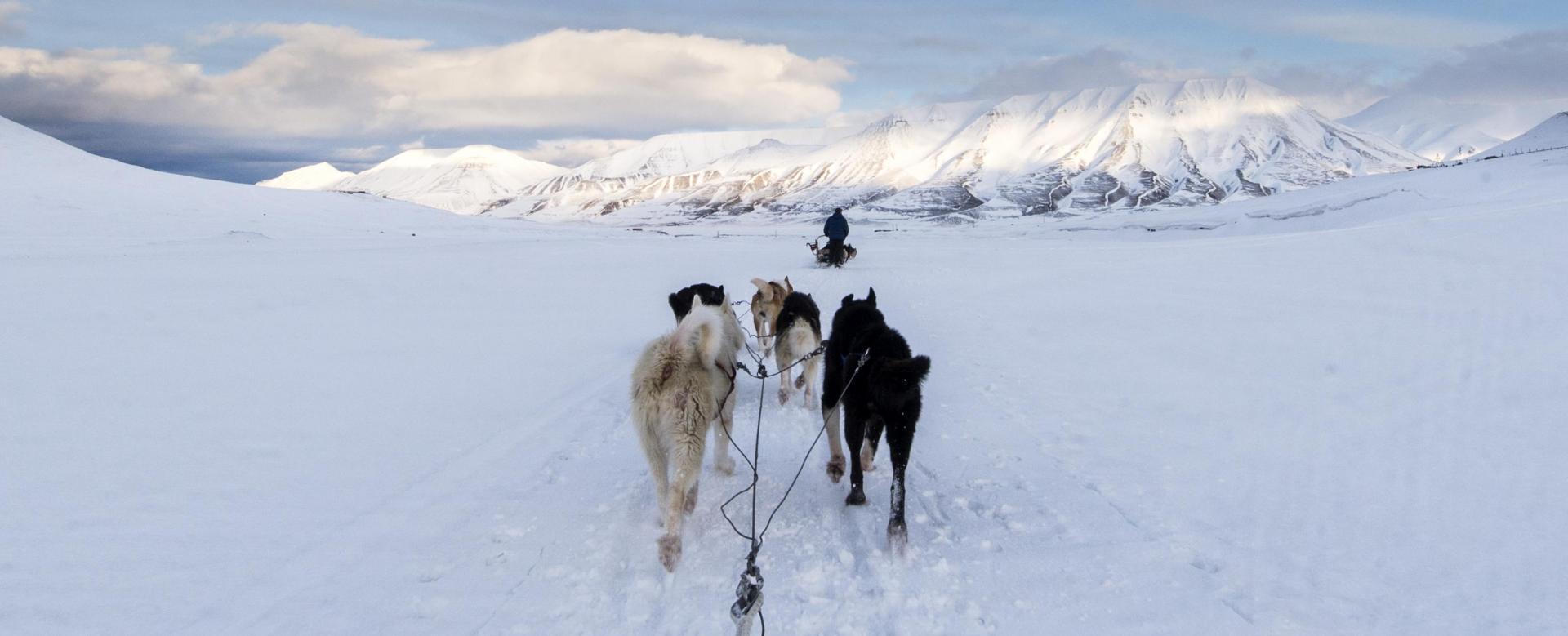 Voyage à pied : 78e n : traîneau, grotte de glace et raid à skis