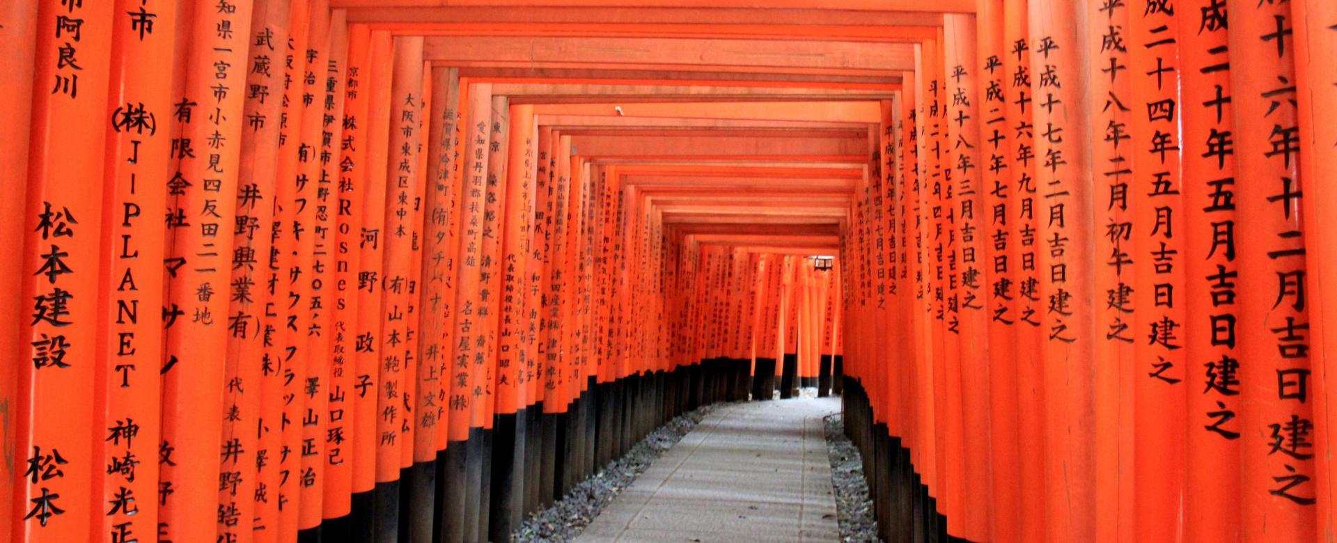 Voyage à pied Japon : Mont fuji et cités impériales