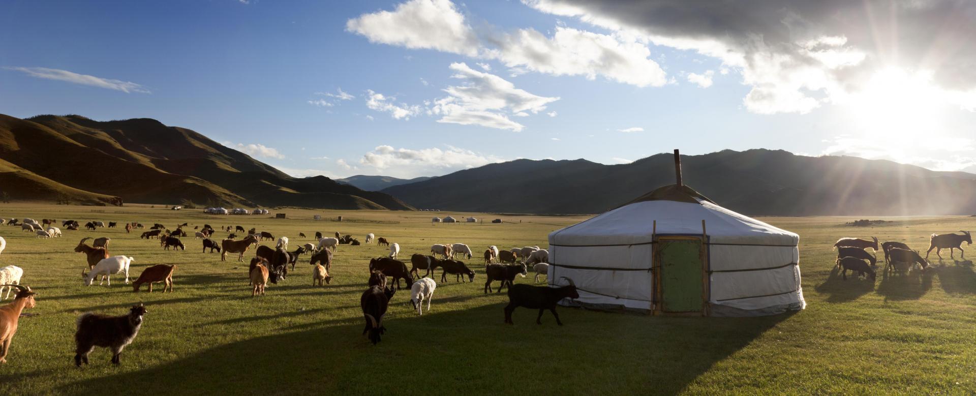 Voyage à pied Mongolie : Trek de l'arkhangai