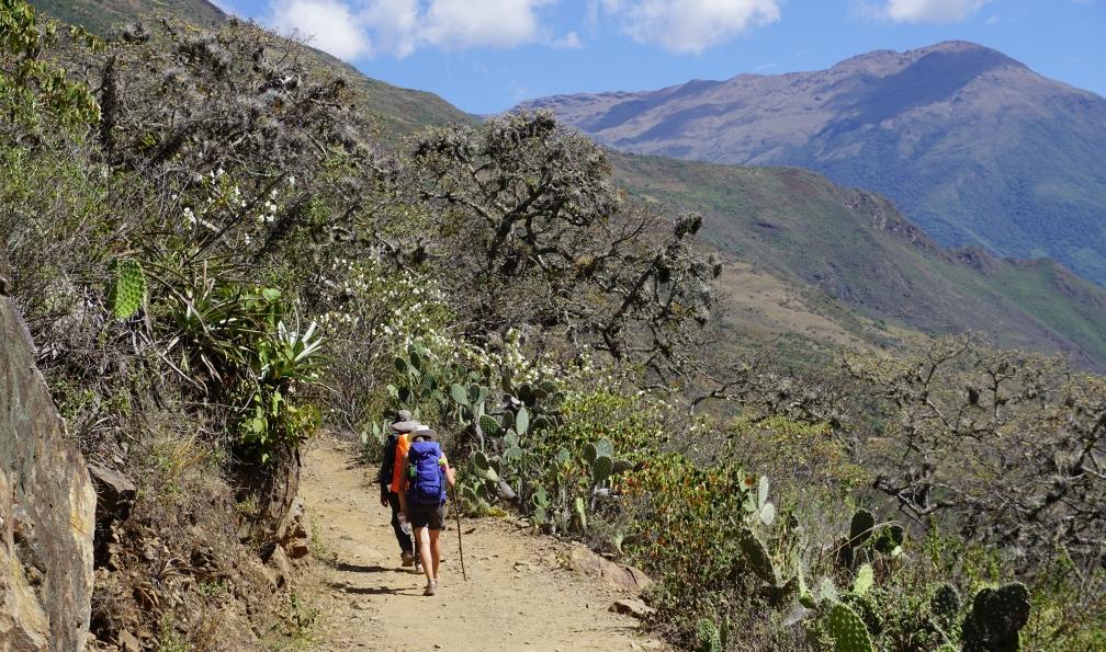 Image Le trek des citadelles incas