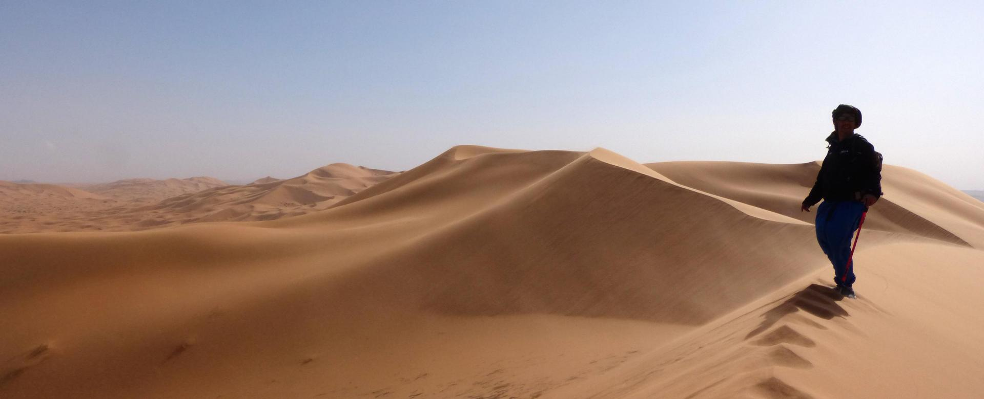 Voyage avec des animaux Maroc : Là-bas au sud, le désert
