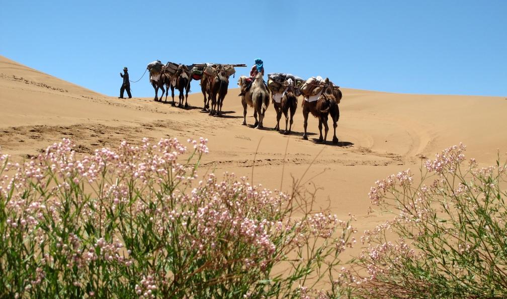 Image Dans les dunes du désert de badain jaran