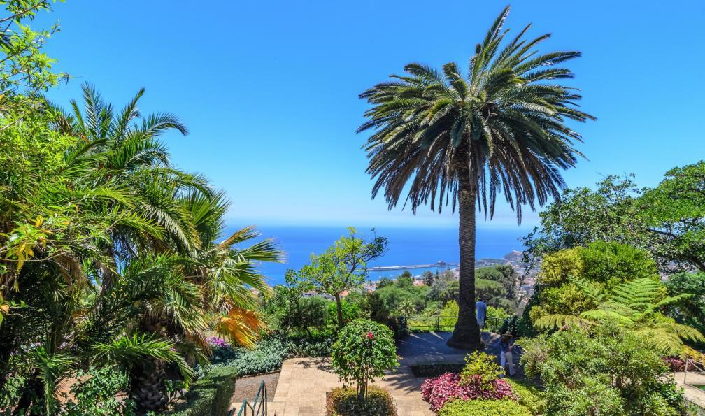 Image Escapade sur l'île aux fleurs