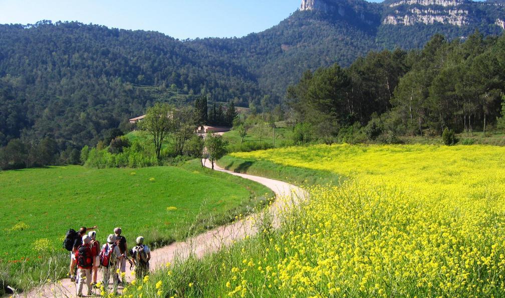 Image Montagnes de barcelone