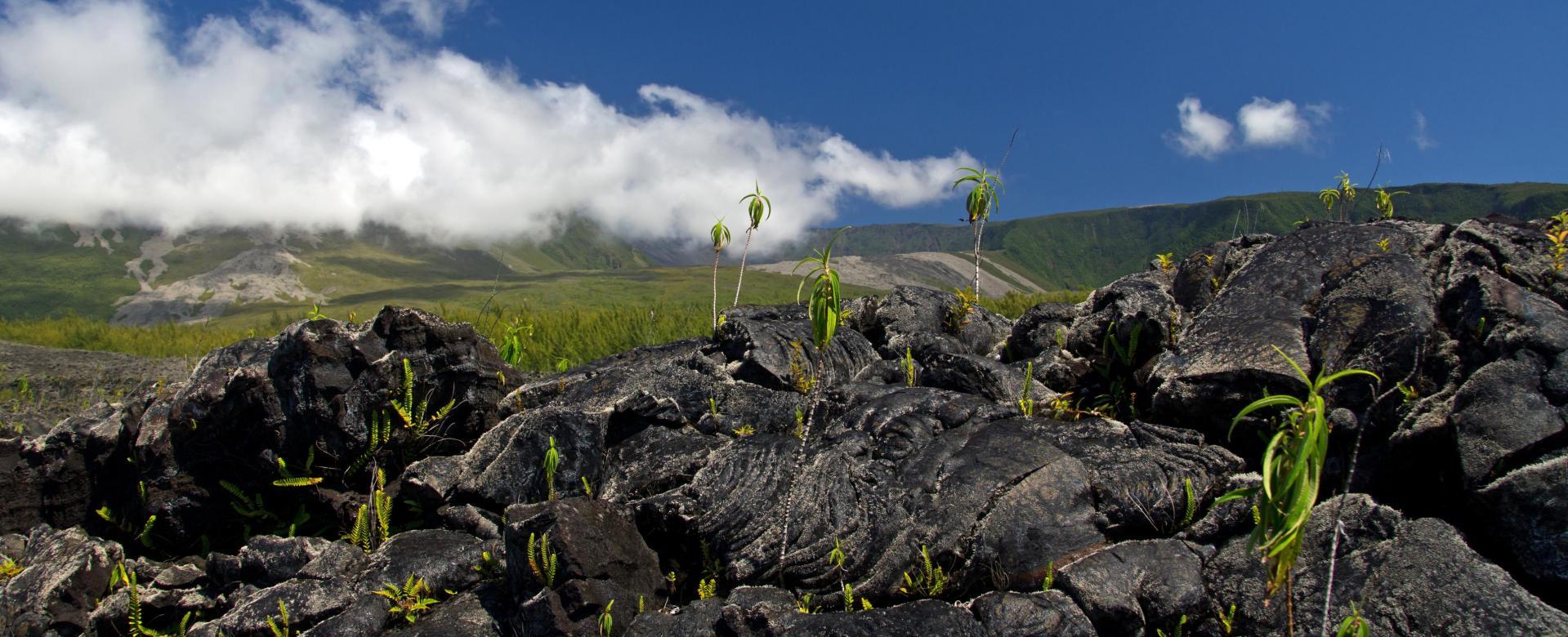 Voyage en véhicule : Volcans de l'océan indien