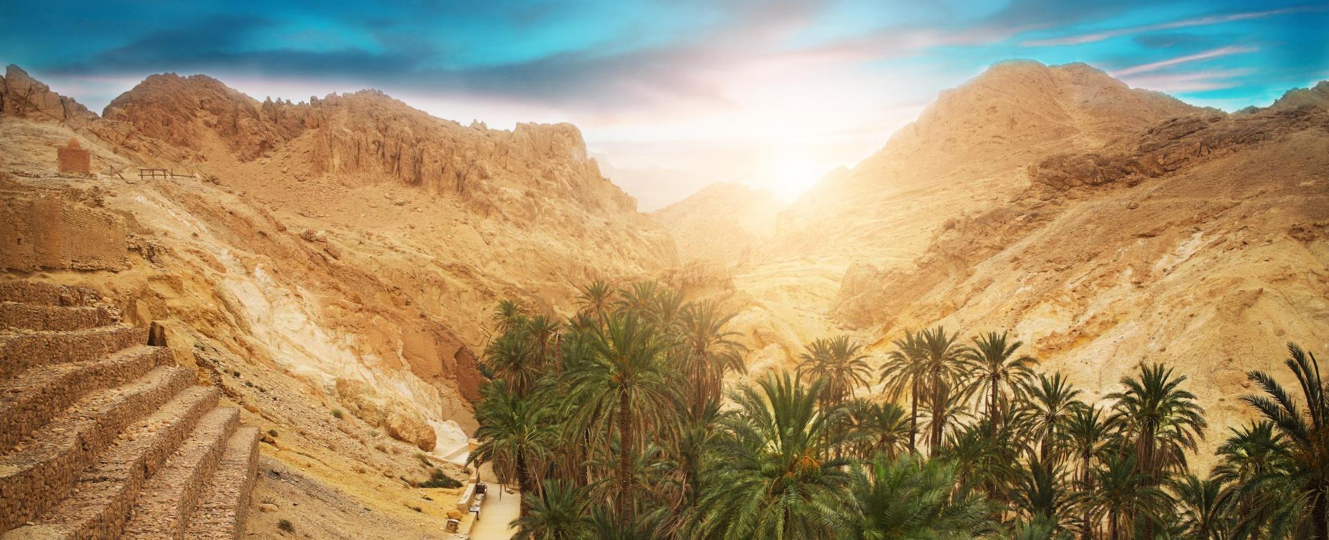 Voyage à pied : Montagnes, dunes et palmeraies