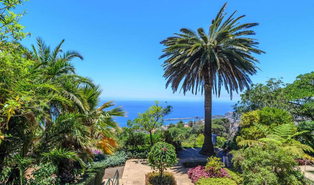 Image L'île jardin