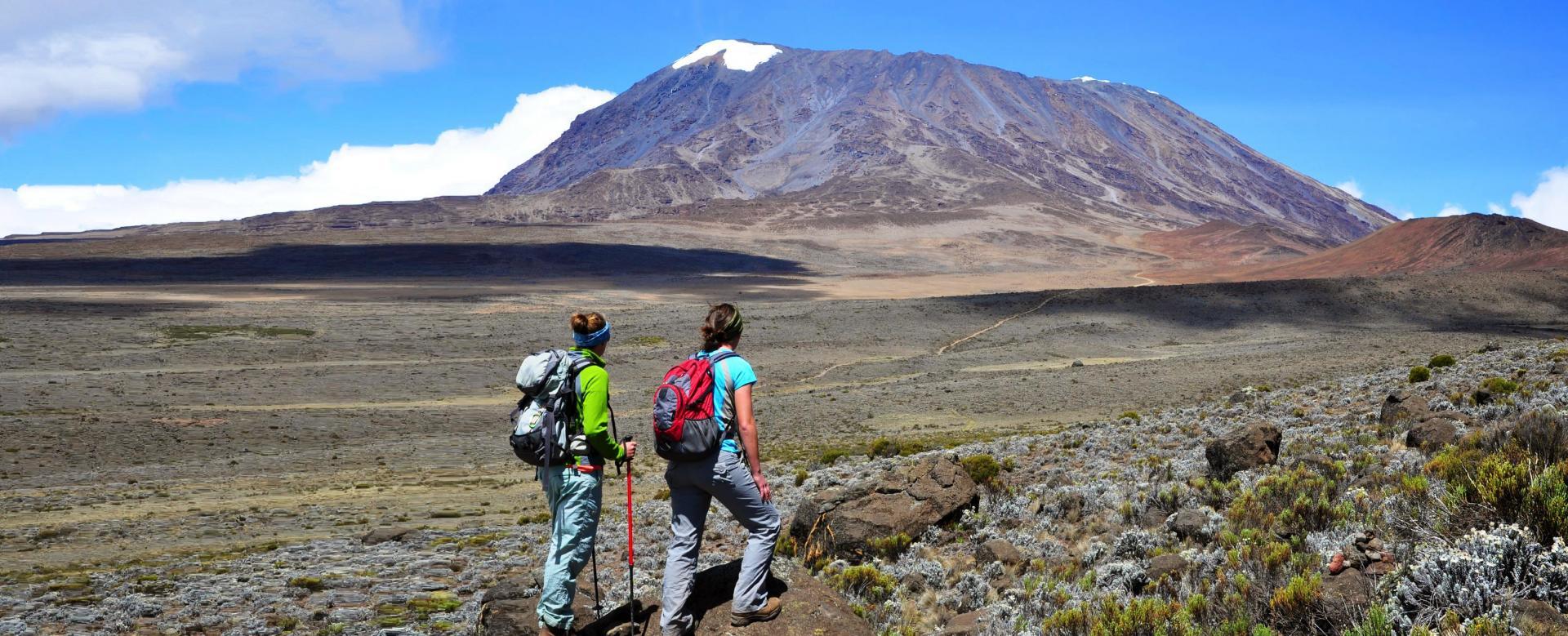 Voyage à pied : Kilimandjaro : voie machame