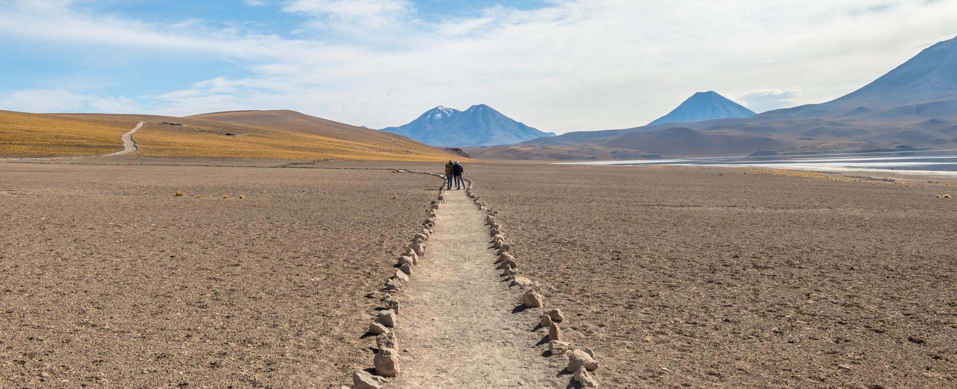 Voyage à pied : Atacama : entre salars et volcans