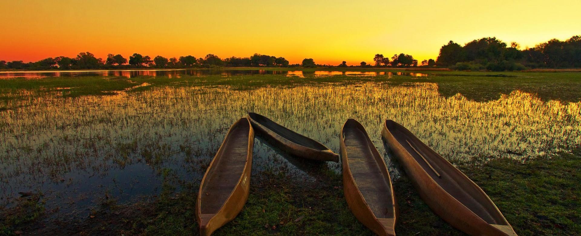 Voyage en véhicule : Du namib au zambèze