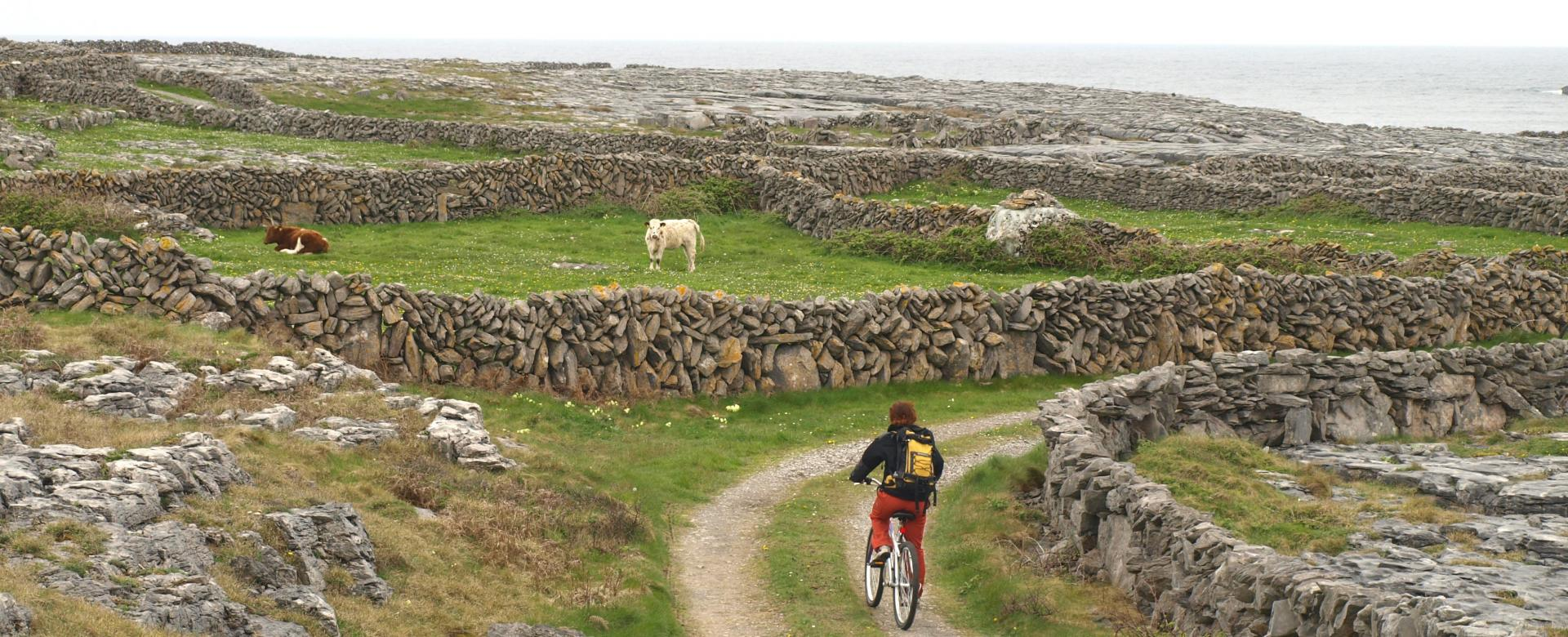 Voyage à vélo : Irlande : Iles d'aran et connemara à vélo en famille