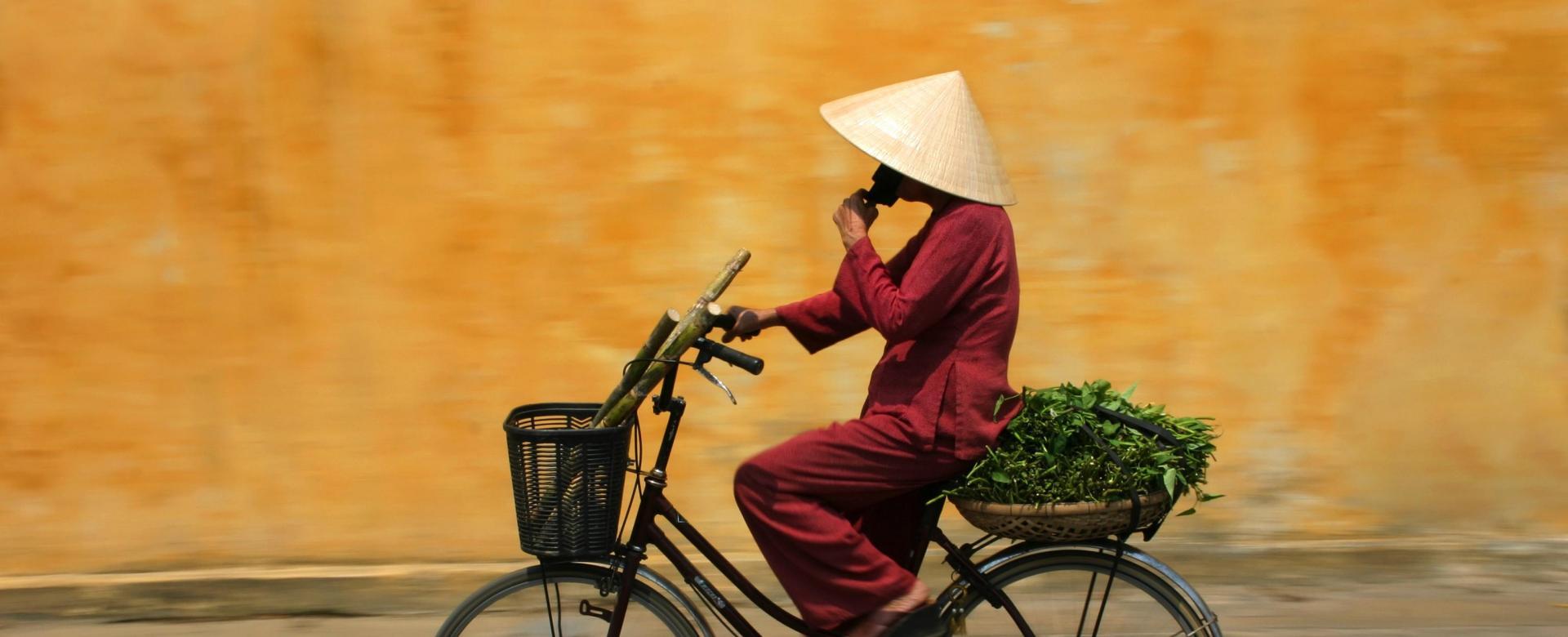 Voyage en véhicule : Les mystères du viêtnam à vélo