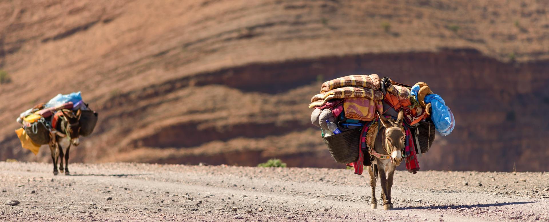 Voyage à pied Maroc : Au toubkal