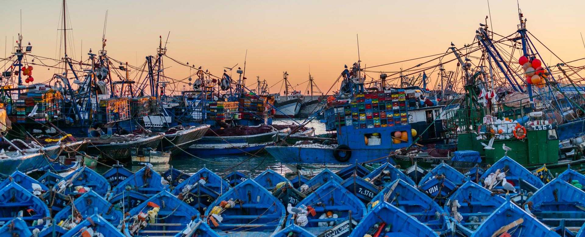 Voyage à pied Maroc : Rando bien-être à essaouira