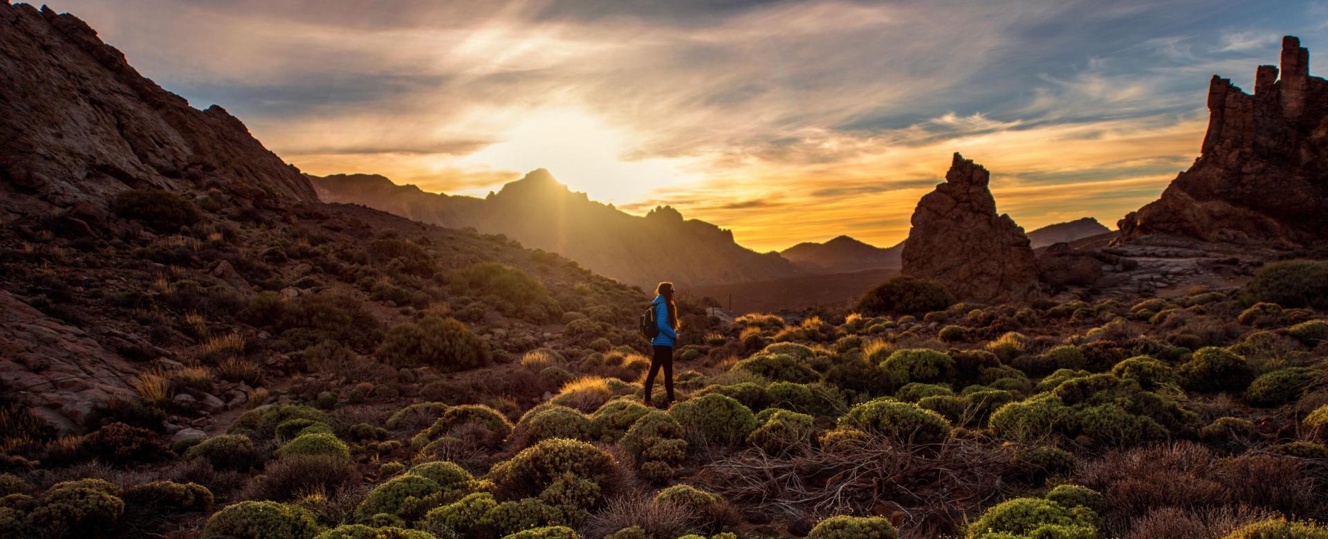 Image Tenerife idyllique