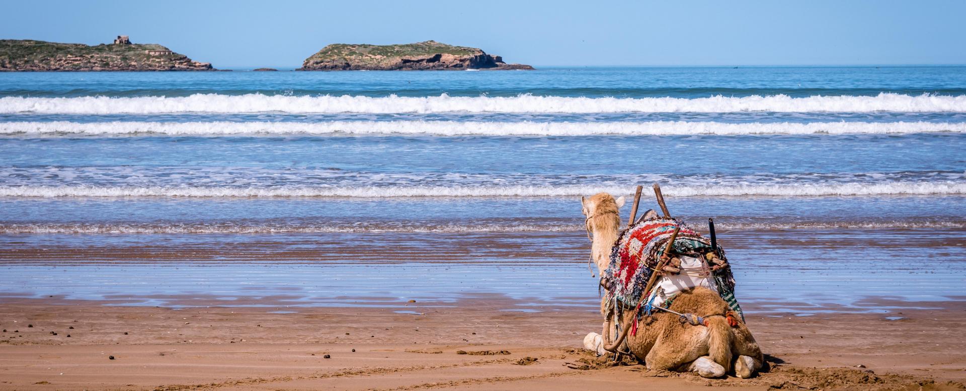 Voyage à pied : Maroc : Villages berbères et océan