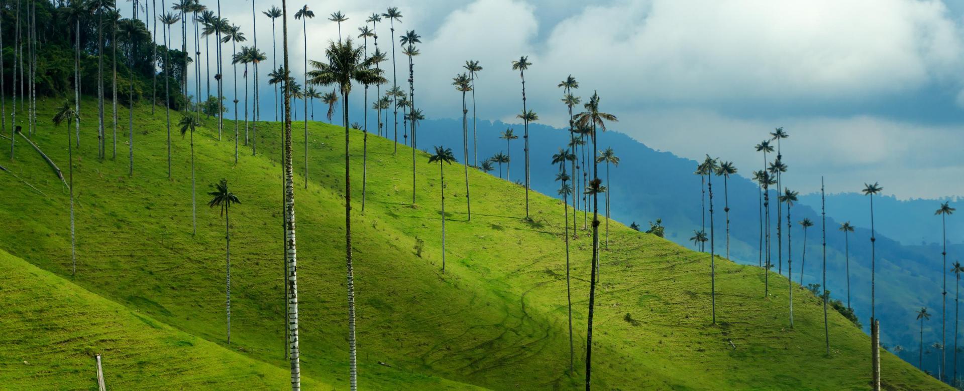 Voyage à pied : Charmes colombiens