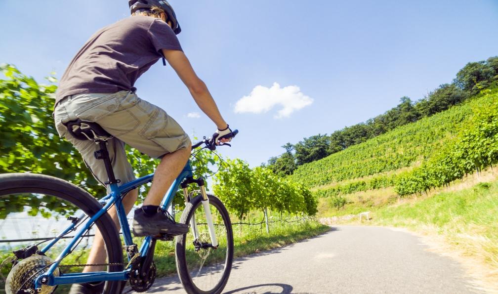Image Villages et vignobles des côtes du rhône à vélo
